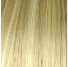 Light Ash Blonde Highlights