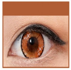 BROWN Coloured Contact Lens Ministar 4 tone  -1 Year (Pair)