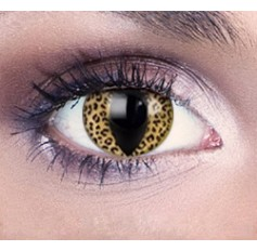 Leopard Contact Lenses 1 Year