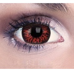 Vampire Contact Lenses 1 Year
