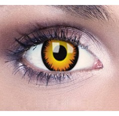Vampire Haloween Contact Lenses 1 Year