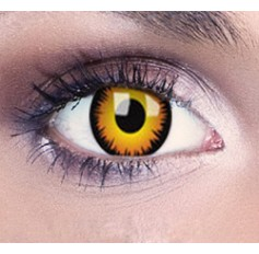 Orange wolf contact lenses | Contact lens solution | Quickclipinhairextensions.co.uk