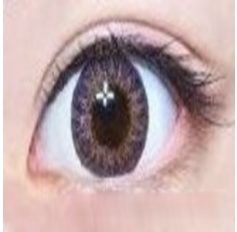 PURPLE Coloured contact Lenses  GEO Stella 3 Tone - 1 Year (Pair)