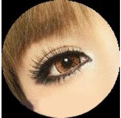Brown Cosmetic Lenses 1 Year