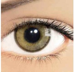 Ochre Hazel Brown Hidrocharme Hidrocor Freshgo Contact Lens 3for2 on all Annual 12 MONTH wear lenses Coloured Contacts (2 lenses)
