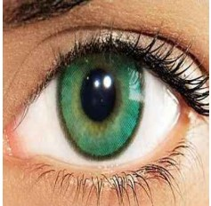 Green Verde Hidrocharme Hidrocor Freshgo Contact Lens 3for2 on all Annual 12 MONTH wear lenses Coloured Contacts (2 lenses)
